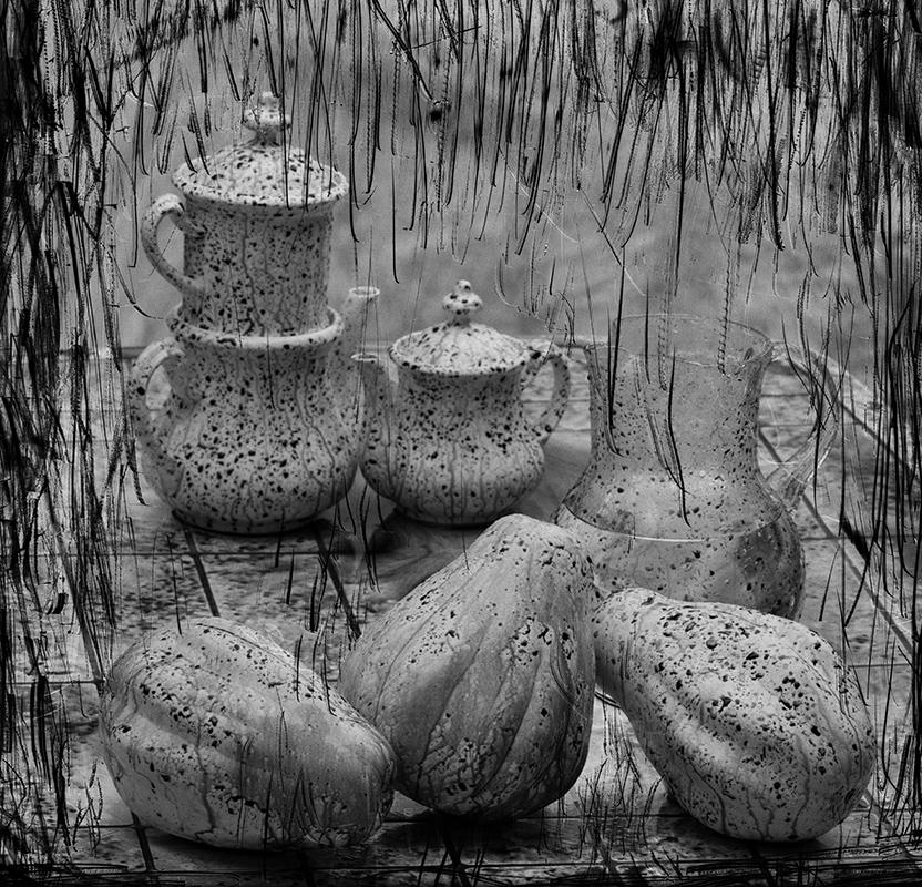 Csendélet esőben