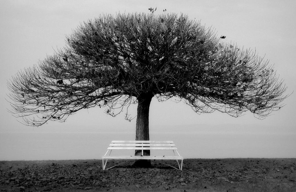 László Mandur: Solitude
