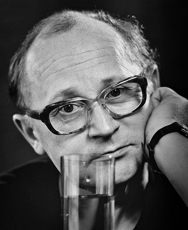 Mihály Ladányi (1980)