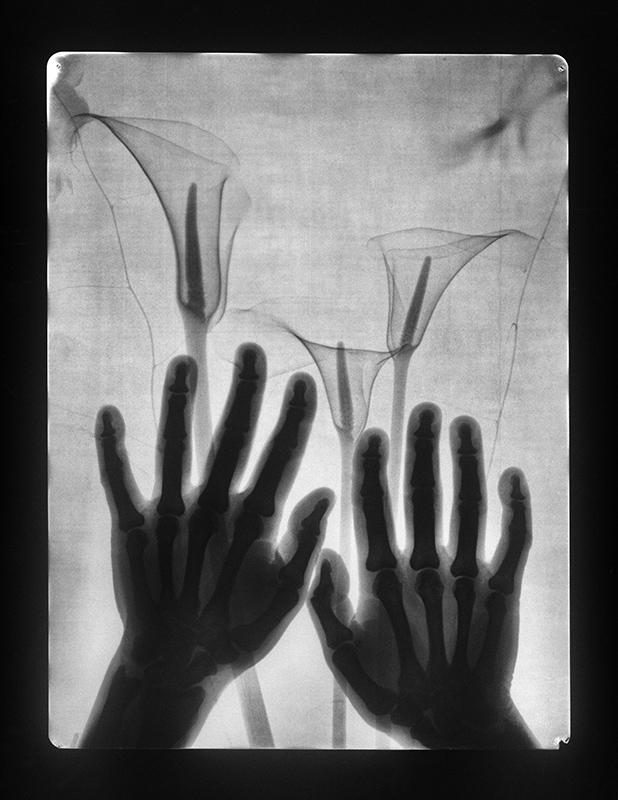 Virágok anyámnak (1982)