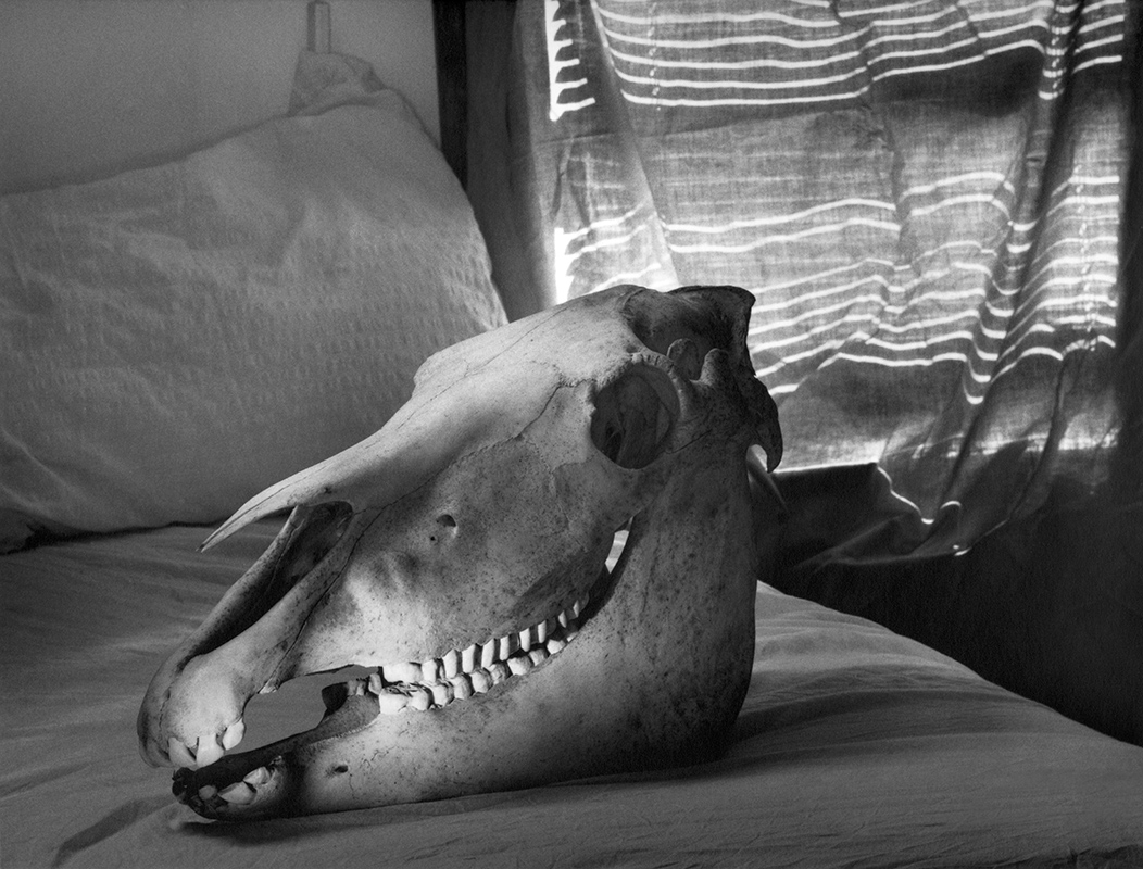 Haláltánc – Bächer Iván emlékére (2002)